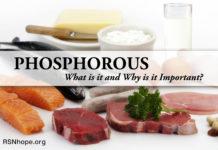 phosphorus renal diet