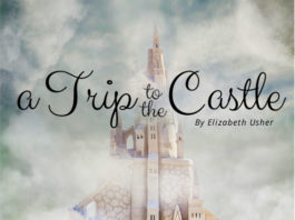 A Trip to the Castle - essay contest