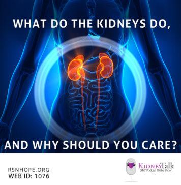 Kidney Talk What Do Kidneys Do