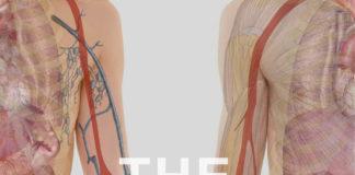 the Kidney project-Kidney-Talk