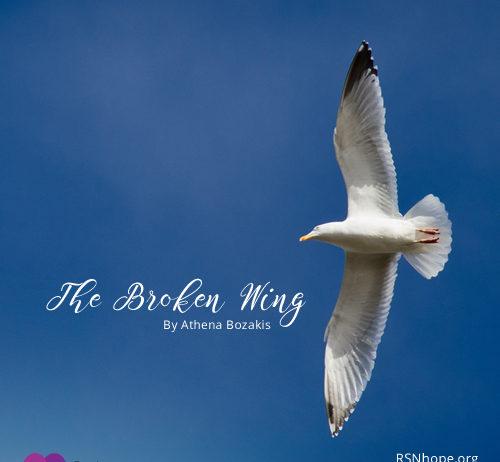 The Broken Wing