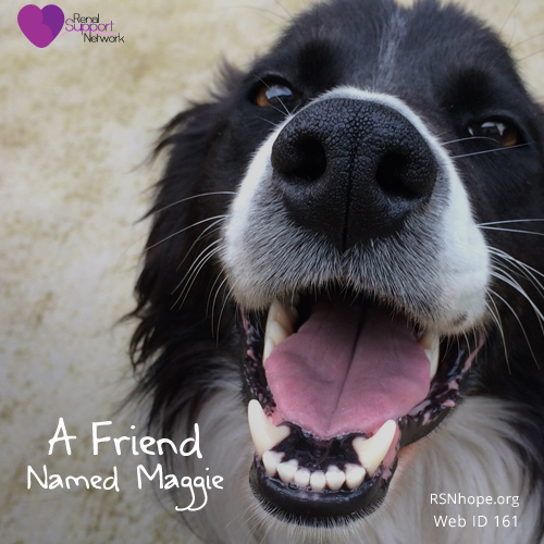 Jim Dineen - a friend named maggie
