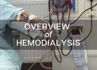 overview of hemodialysis