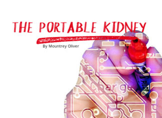 The Portable Kidney