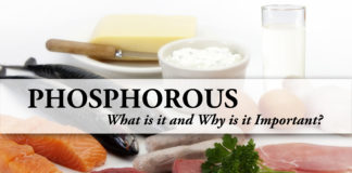 phosphorus renal diet