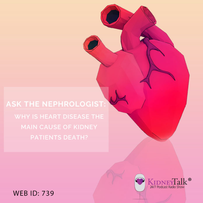 Why is Heart Disease the Main Cause Kidney Patients End Up Dying?