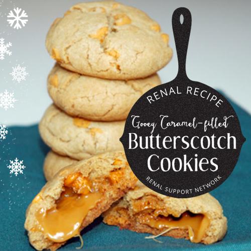 Renal Recipes - Renal Diet - Cookies