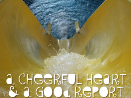 A Cheerful Heart and a Good Report-2