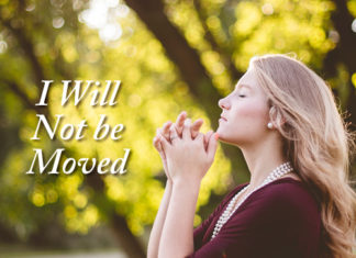I Will Not be Moved