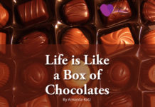 Life is Like a Box of Chocolates