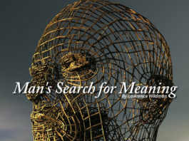 Man's Search for Meaning - 2010 essay