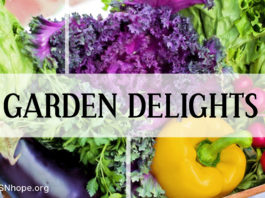 Gardening for Healthy Diet and Exercise