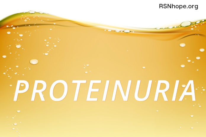 protein in the urine albumin kidney disease