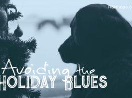 Avoiding the holiday blues
