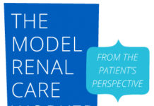 The Model Renal Care Worker from the Patient's Perspective