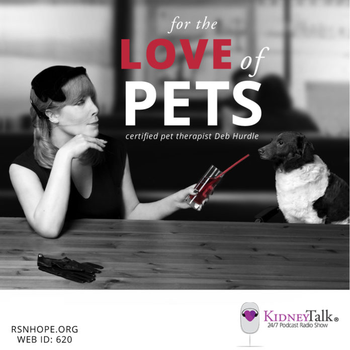 For-Love-Pets-kidney-talk