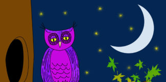 Hemodialysis for Night Owls-Kidney-Talk
