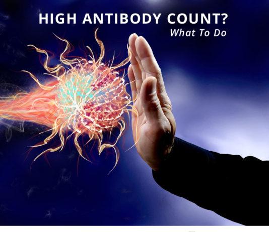 antibody count-kidney talk