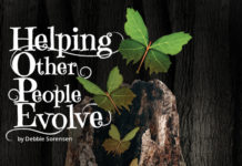 helping other people evolve - 2015 essay