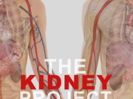 the Kidney project-Kidney-Talk