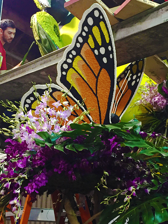 Butterfly-Donatelife float