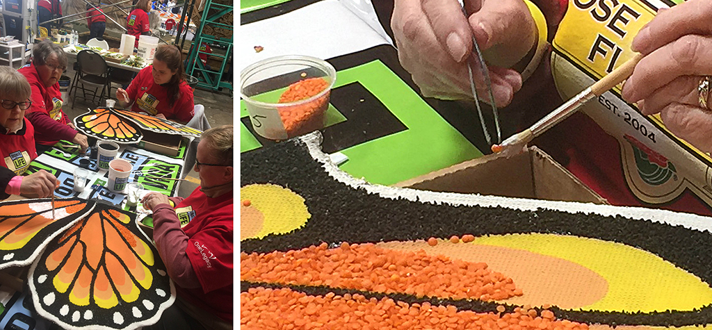 Donalelife - rose parade float - gluing seeds