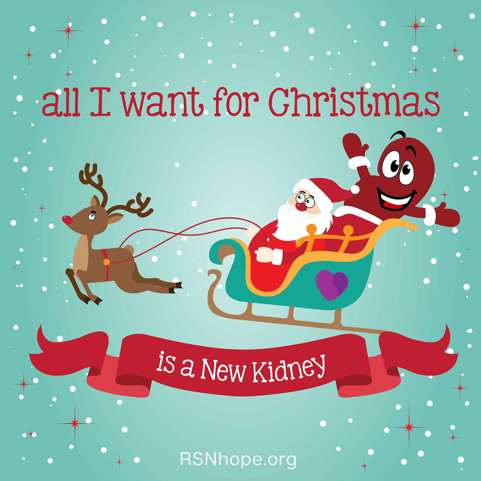 santa in his sleigh renal support network