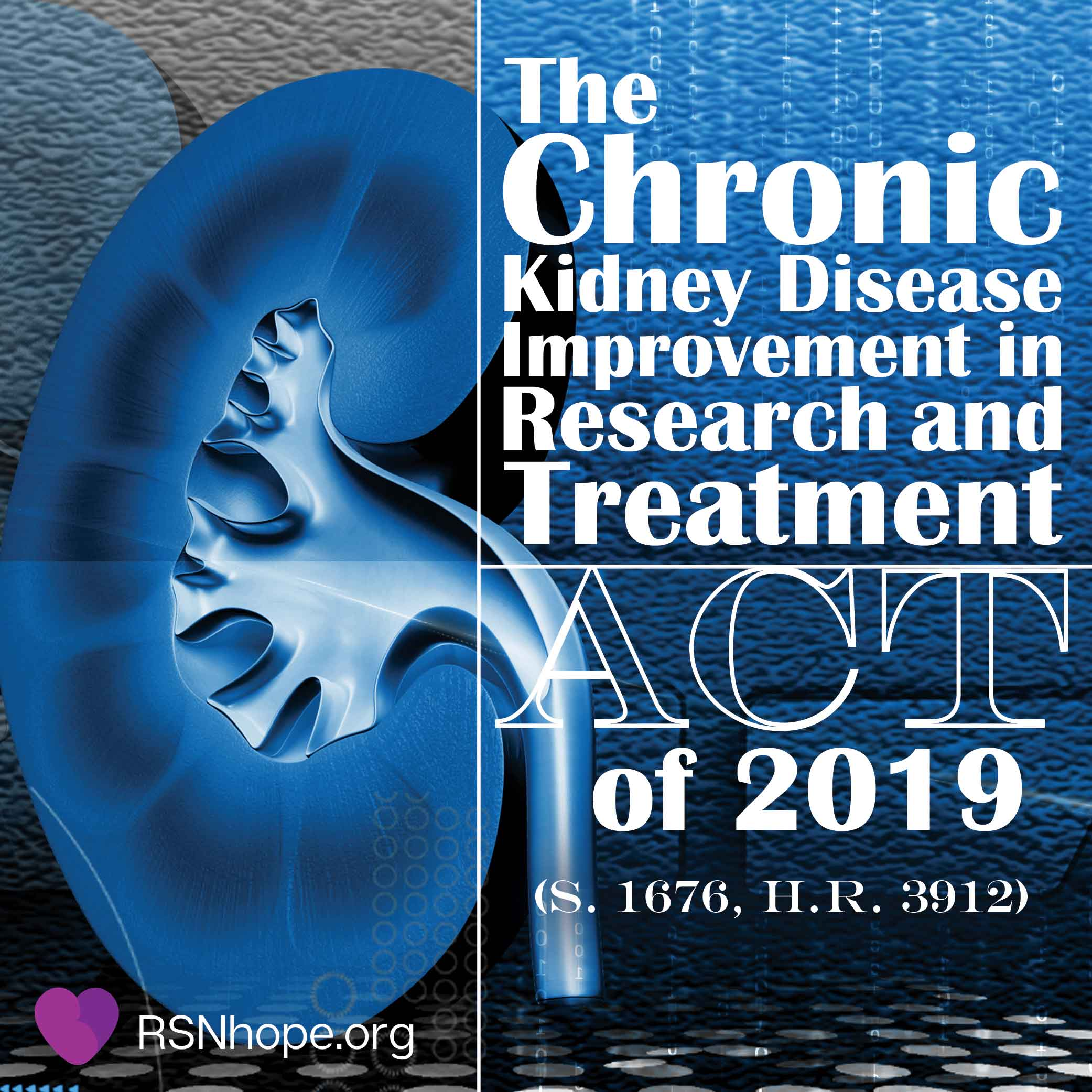 The Chronic Kidney Disease Improvement in Research and ...